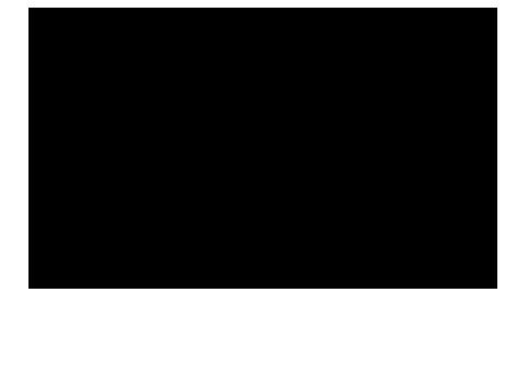 silicones1